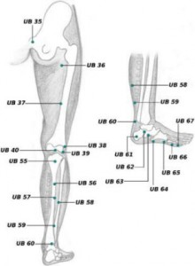UB-55-acupressure-point