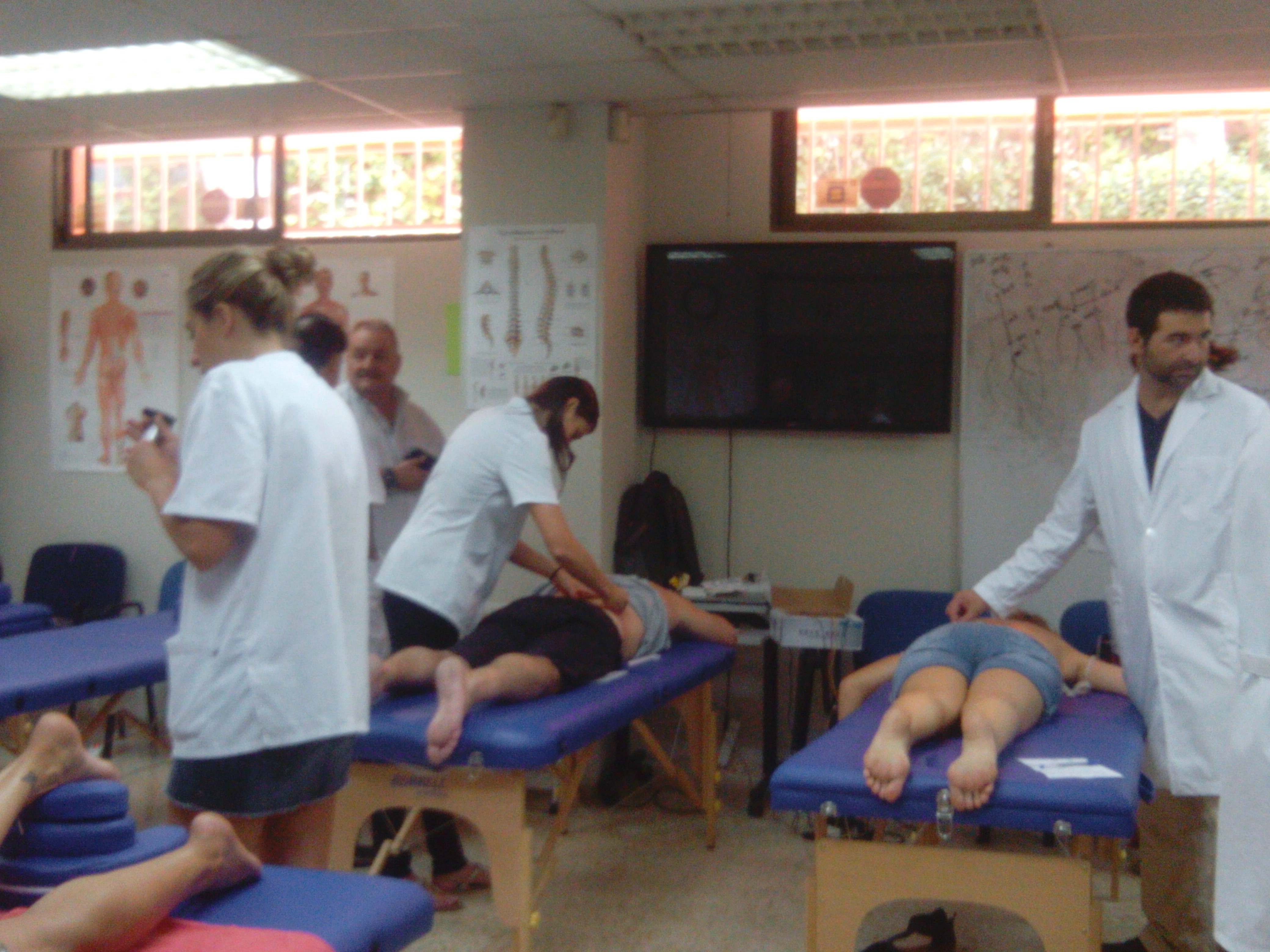CURSO INTENSIVO DE ACUPUNTURA MADRID